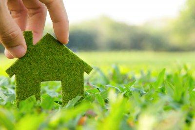 Bauen und Natur: Green Living im Ökohaus